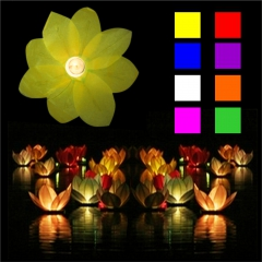 Wasserlaterne - Wasserlampion Lotusblüte
