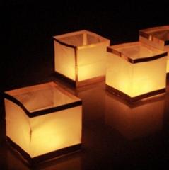 Wasserlaterne - Wasserlampion Gold