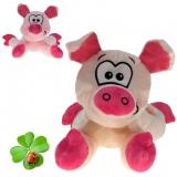 Plüsch Schwein / Glücksschwein Reiner 22 cm